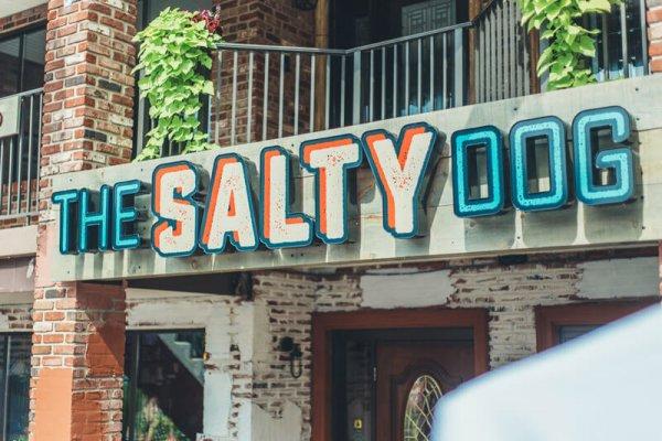 Salty-Dog-10